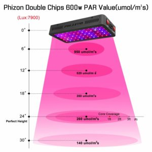 600w led grow light review